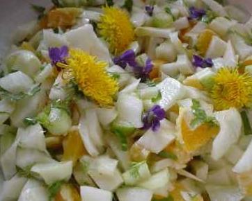 salat frischkost fenchel orangen